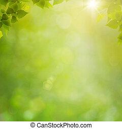 été, naturel, résumé, arrière-plans, bokeh, forêt, feuillage, frais