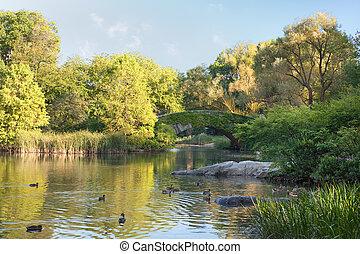 étang, parc, vue, central, ny