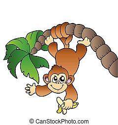arbre, paume, singe, pendre