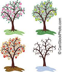 arbre, saisons, ensemble, vecteur, quatre, pomme