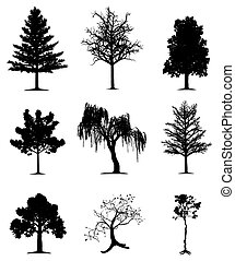 arbres, collection