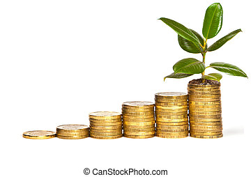 argent, croissance