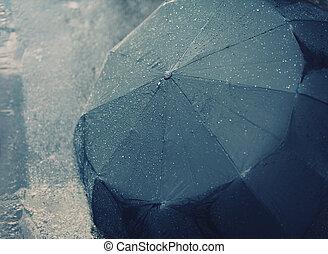 automne, pluvieux, parapluie, jour, mouillé