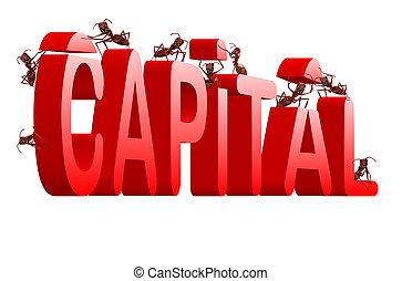 bâtiment, capital
