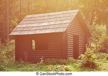bâtiment, construit, naturel, wood., localisé, maison, petit, forêt