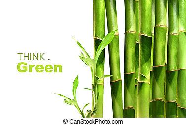 bambou, empilé, pousses, côté