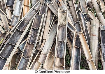 bambou, site construction