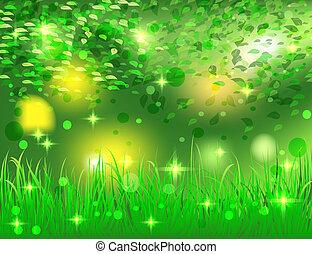 beau, clair, résumé, forêt