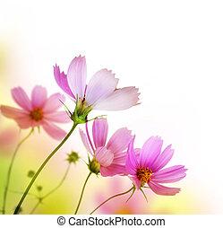 beau, floral, fleur, conception, border.