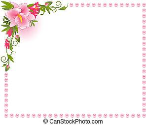 beau, fond, orchidée