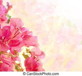 beau, rose, résumé, flowers., conception, fond, frontière florale