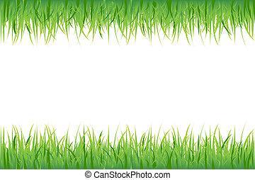 blanc, herbe, fond