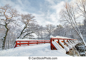 blanc, hiver, forêt