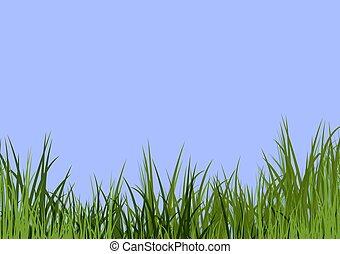 bleu, herbe, ciel, &