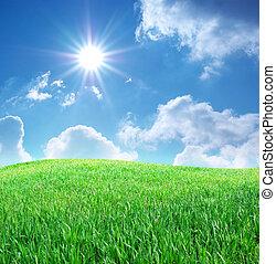 bleu, herbe, ciel, profond