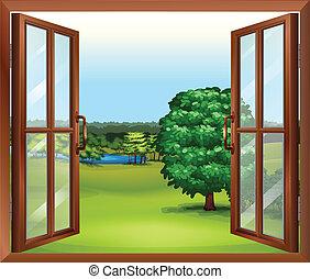 bois, fenêtre, ouvert