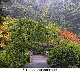brumeux, matin, jardin japonais