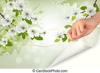 brunch, arbre, fleurs, fond, floraison, vecteur, main., illustration., nature