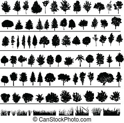 buissons, arbres, herbe