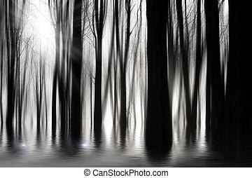 bw, spooky, inondation, bois