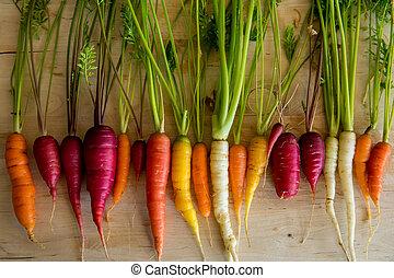 carottes, organique
