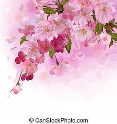 carte, cerise, fleurs roses, branche