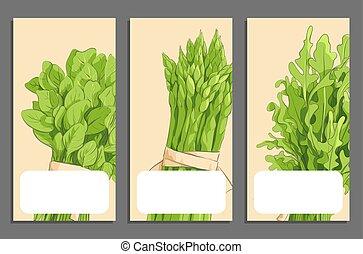 cartes, légumes, vert