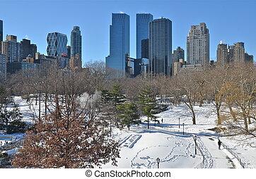 central, hiver, parc, york., nouveau