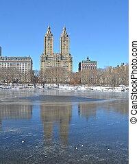 central, nouveau, hiver, york., park.
