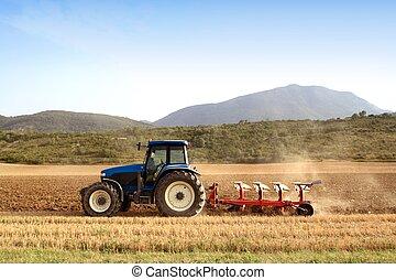 champs blés, céréale, agriculture, labourer, tracteur