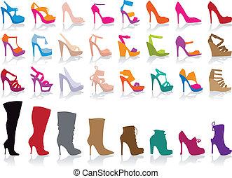 chaussures, vecteur, ensemble, coloré