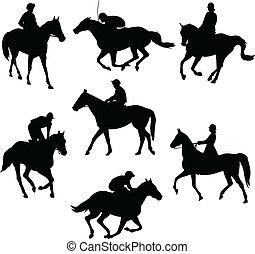 chevaux, équitation
