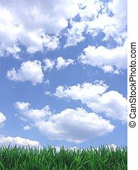 ciel bleu, herbe, vert