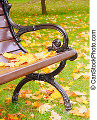closeup, banc, parc, automne