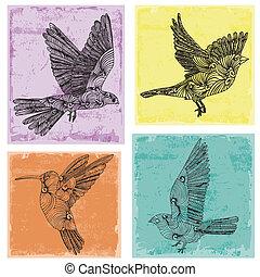 collection, oiseaux