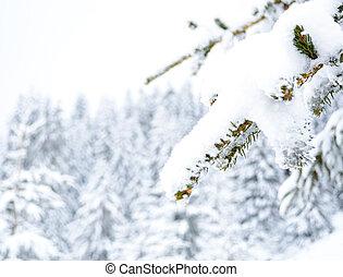 concept, hiver
