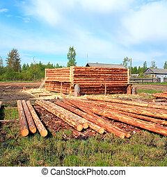 construction, nouveau, bois, bâtiment