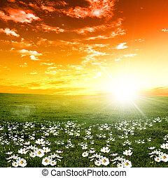 coucher soleil, paysage, nature
