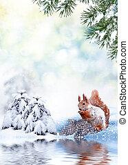 couvert, neige, arbres hiver, paysage.