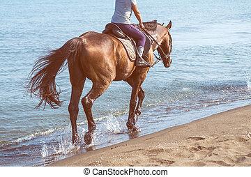 day., cheval, ensoleillé, galoper, mer