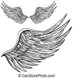 dessin animé, aile ange