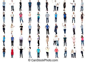 diversified, longueur pleine, collection, gens