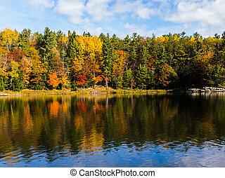 eau, scénique, automne, couleurs, reflété