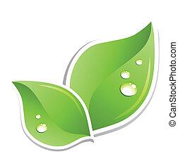 eau, vert, vecteur, feuille, droplets.