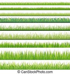 ensemble, grand, herbes