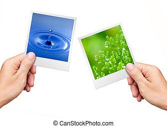 environnement, plante, nature, concept, eau, photos, tenant mains
