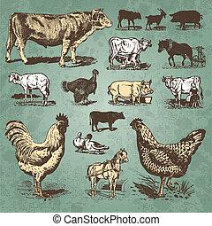 ferme, vendange, ensemble, animaux, (vector)
