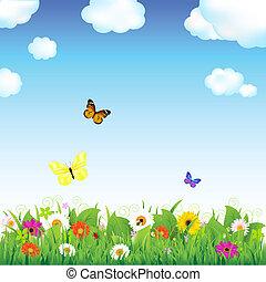 fleur, pré, papillons