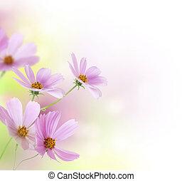 fleurs, floral, border., conception, beau