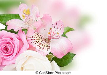 fleurs, rose